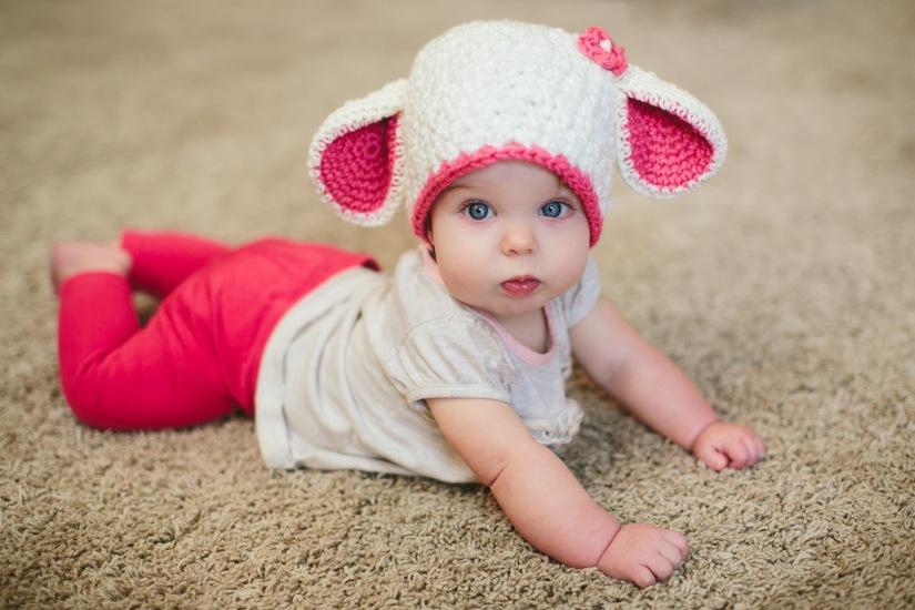 Lamb hat-05